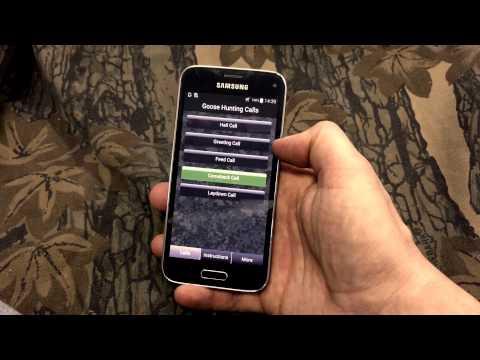 Video of Goose Hunting Calls
