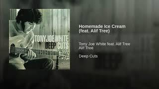 Homemade Ice Cream (feat. Alif Tree)