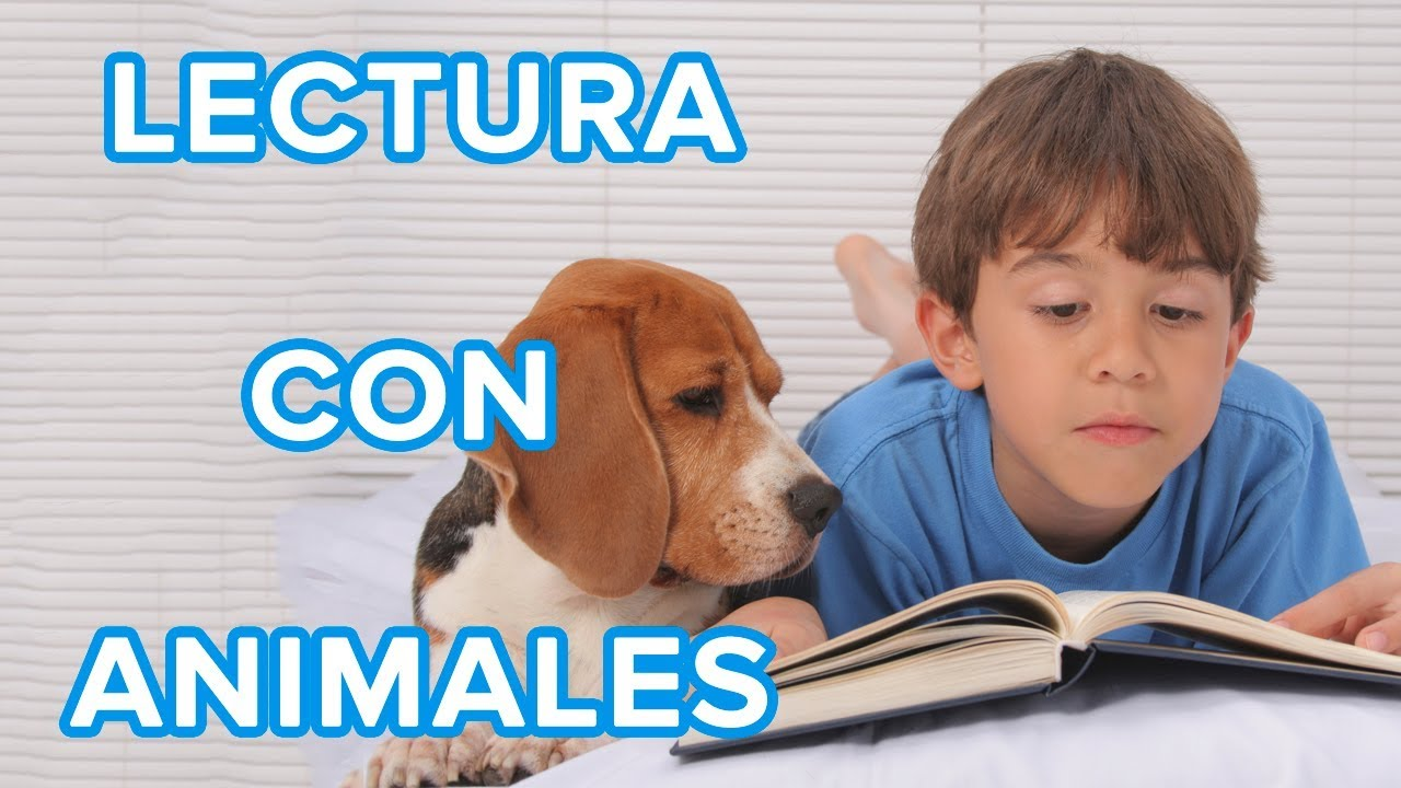 Terapia de lectura con perros para niños | Cómo les ayuda según sus necesidades ????