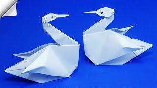 DIY paper crafts for kids Paper swan