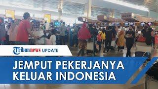 Kasus Covid 19 Naik, Perusahaan Jepang Charter Pesawat dan Jemput Pekerjanya Keluar dari Indonesia