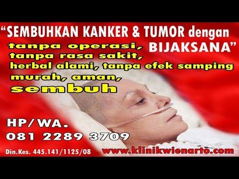 Video MANFAAT BUNGA ROSELLA SEBAGAI ANTI KANKER