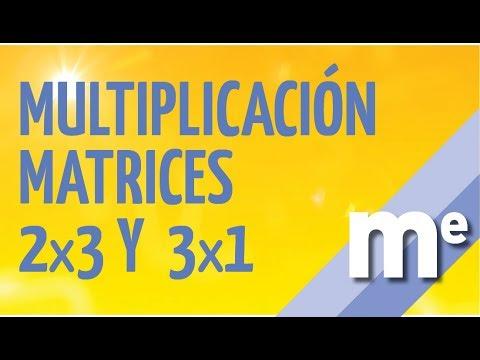 Multiplicacion de matrices 2x3 y 3x1