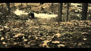 The Antlers - Bear