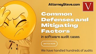 Copyright infringement defenses - Bittorrent and Software Audits!
