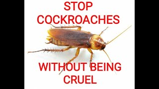STOP COCKROACHES WITHOUT KILLING & OTHER KIND REMEDIES FOR ALL INSECTS
