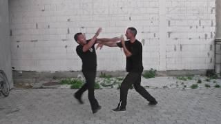 Wu Tai The Art of Self Defense