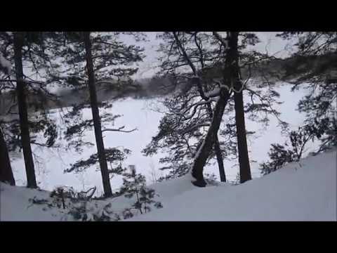 От Деснянки до Коляного озера  на лыжах!