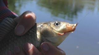 Рыбалка ловля рыбы на скользящим поплавком