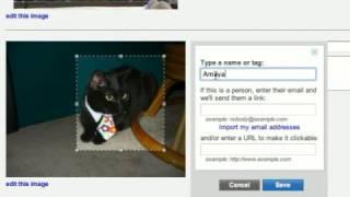 Photobucket Tutorial: Tags & Descriptions