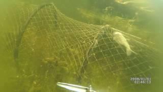 Размеры верши для ловли рыбы