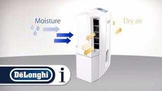 How a De'Longhi Dehumidifier Works
