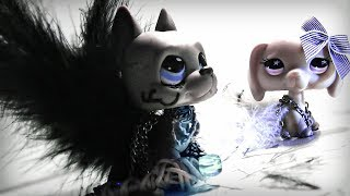 LPS ~ Don