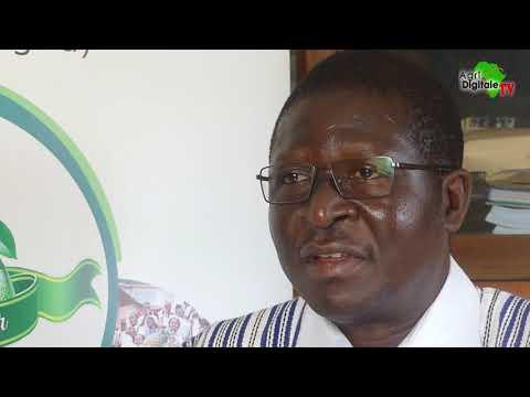 Togo : La foire aux fruits annoncée pour Avril 2022 mais avant… Togo : La foire aux fruits annoncée pour Avril 2022 mais avant…