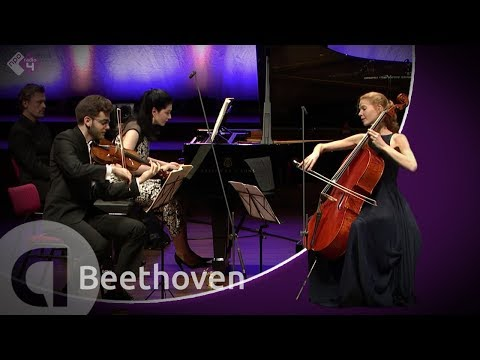 beethoven piano trio in d major    ghost    harriet krijgh a