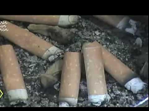 La relazione su dipendenze fumanti soggette
