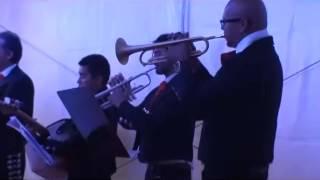 Nucho NDC latino video preview