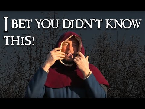 Modern History: A Funny Thing About Medieval Hoods