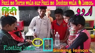 Floating and sinking lemon science experiment in Urdu - Hindi |  water density science experiment
