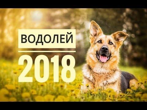 Любовный гороскоп на 2018 год для льва