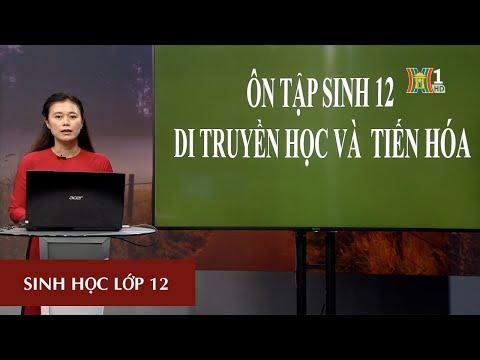 MÔN SINH HỌC - LỚP 12 | DI TRUYỀN HỌC VÀ TIẾN HÓA | 16H00 NGÀY 11.03.2020 (Dạy học trên truyền hình Hà Nội)