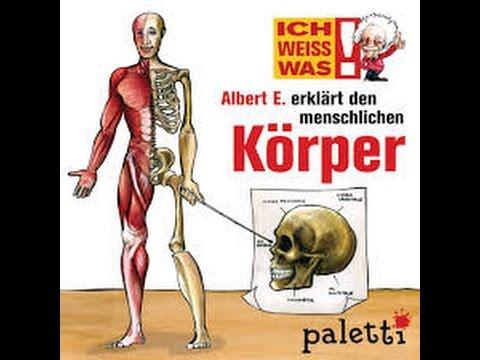 IchWeissWas! Albert E. erklärt den menschlichen Körper