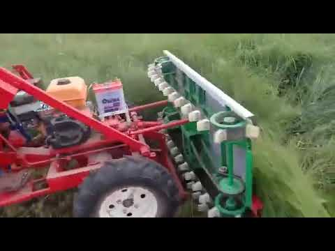 Wheat Cutting Machine, Fodders, Reapers