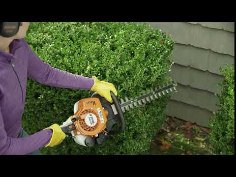 Stihl HSA 45 in Purvis, Mississippi - Video 1