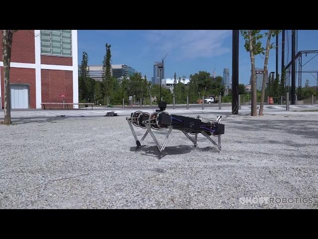 Minitaur – миниатюрная версия маневренного четвероногого робота-разведчика