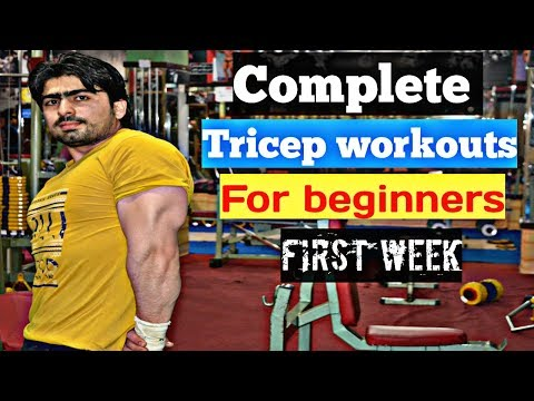 Triceps Complete Workout For Beginners HD video