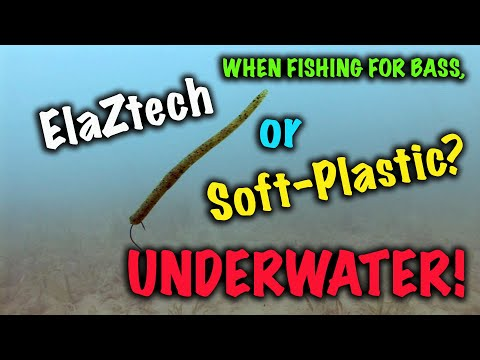 When fishing for bass, what's the performance differences between ElazTech or Soft Plastic worms?