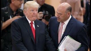 White House Adviser: Trump Has IQ of Inbred Tanning Bed