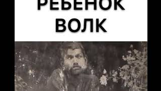 РЕБЕНОК ВОЛК