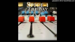 Spice 1 - Shame to the game