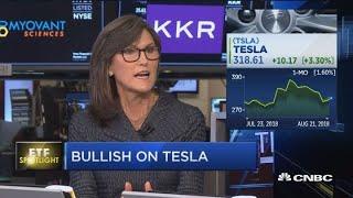 ARK Invest CEO is bullish on Tesla