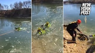 Firefighters rescue this pooch from a freezing cold river | New York Post
