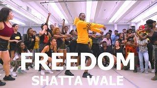 Shatta Wale   Freedom | Meka Oku Choreography