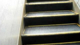 preview picture of video 'it's an outdoor AUTOMATIC escalator'