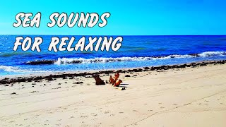 Fall Asleep With Waves Rolling Ashore - Ocean Sounds for Relaxing, Sleeping, Meditation