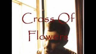 <b>Jeffrey Foucault</b>  Cross Of Flowers