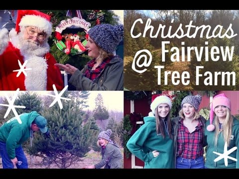 Santa is at Fairview Tree Farm!