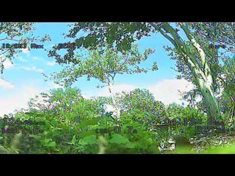 immersion-vortex-150-mini--acro-flight
