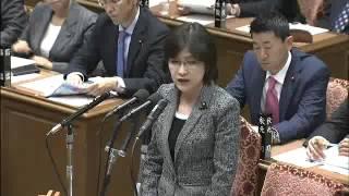2015 11 10 衆議院予算委員会「TPP等」(閉会中審査)