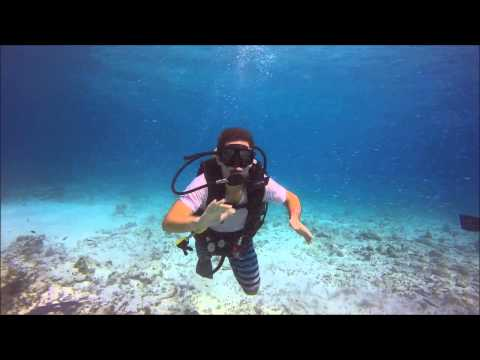 SCUBA DIVING IN CANCUN, MEXICO ( BIRTHDAY 2015 )