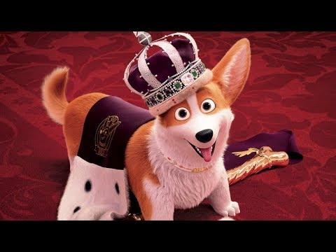 A királynő kutyája online