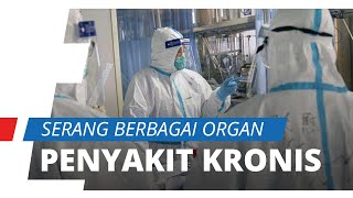 Bertahan Lama dan Serang Banyak Organ, Ahli di China Sebut Virus Corona Bisa Jadi penyakit Kronis