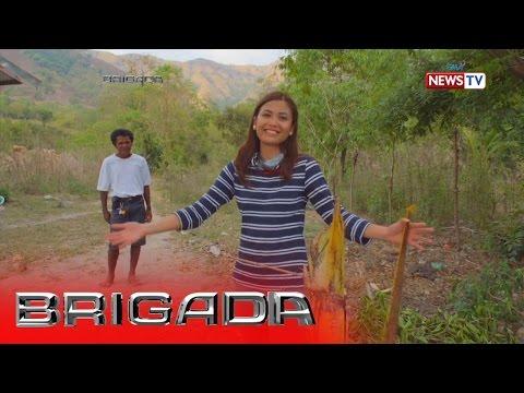 Pinag-aaralan sa mga uod sa mga matatanda