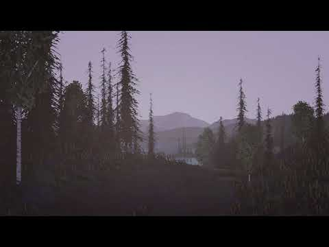 The Old Dirt Road by the Lake (Video)