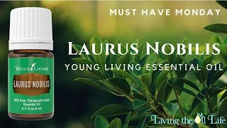Laurus Nobilis (Bay Laurel) from Young Living is our Must Have Monday Oill