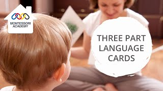 Montessori Language Activities: Three Part Cards